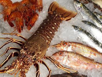 Carvi Marisqueira Restaurante