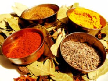 Great India Tandoori Restaurant