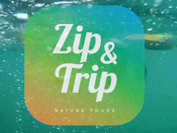 ZIP & TRIP LOCAL TOURS